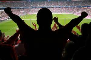 Sports Fan from Bing Images