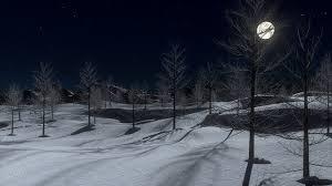 Blog_SnowyWinterNight