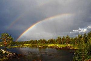 Design_Rainbow