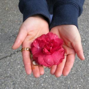 Blog_FlowersinHand