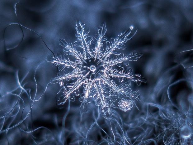 blog_snowflake