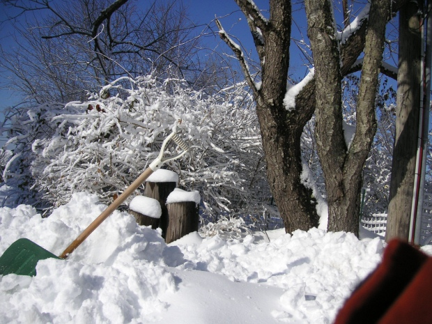 blog_snowshovel