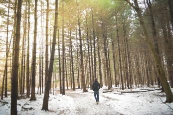 blog_snowywoods