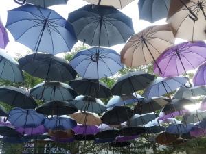 blog_umbrellas
